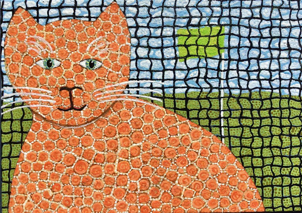 Cat and Safety Net